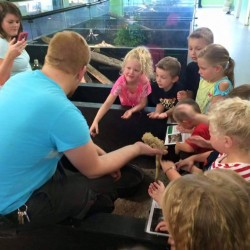 Simon teaching about bearded dragons.