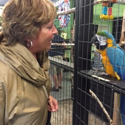 Talking with Buster the Macaw