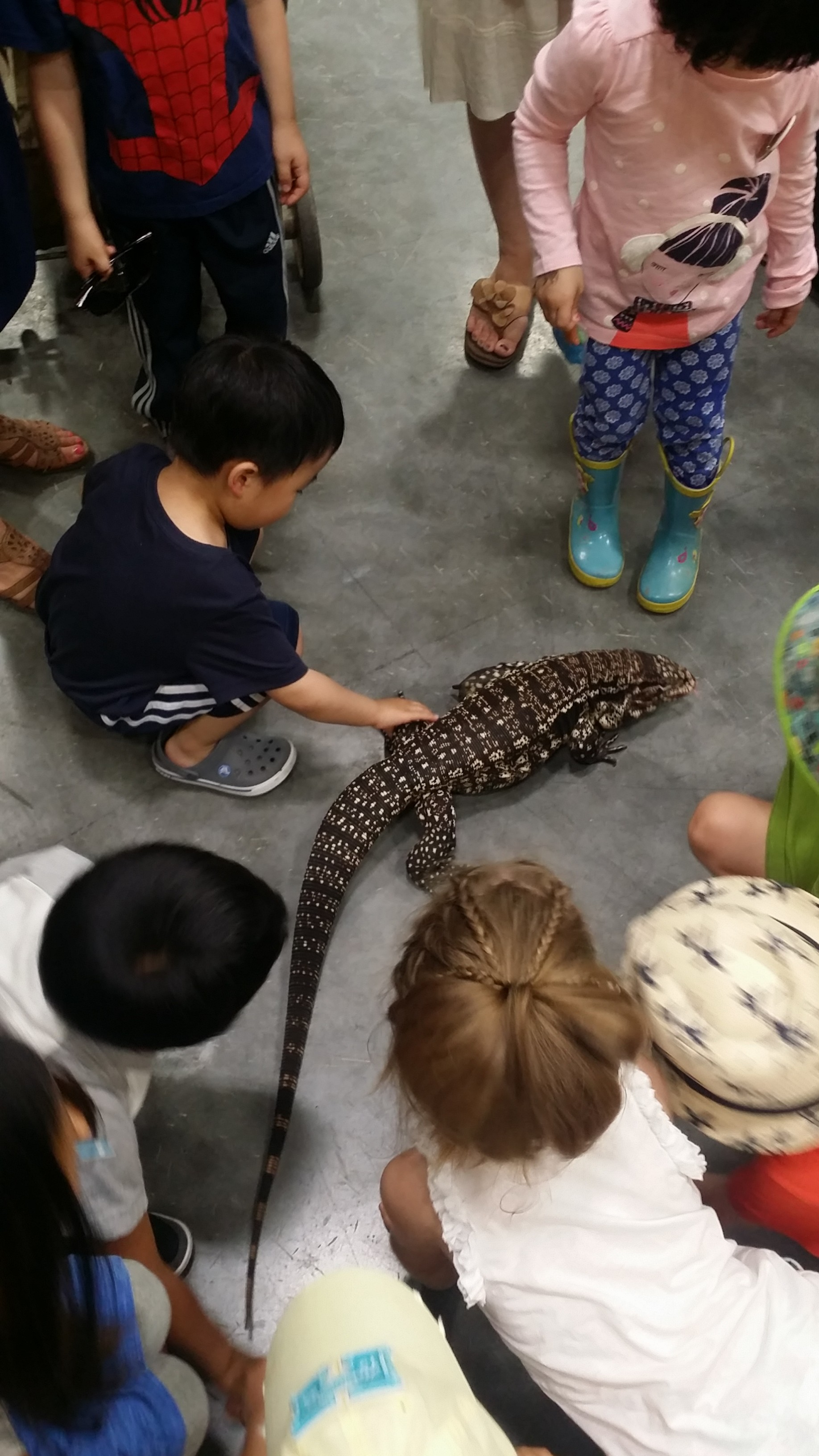 "Kids petting ""Little Foot"" the Argentine Tegu"