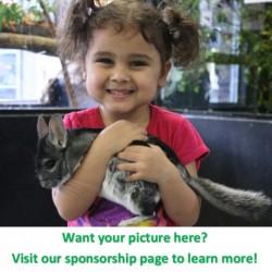 Sponsor an animal!
