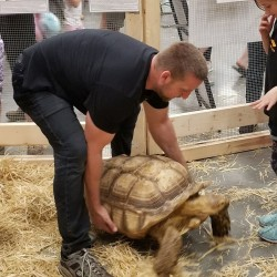 Did we mention the big tortoises??